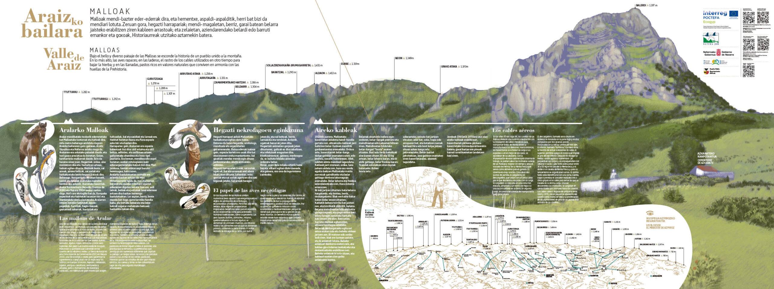 Panel. Cables aéreos en el Valle de Araiz